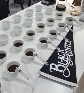 socraticcoffee-20160224-0007
